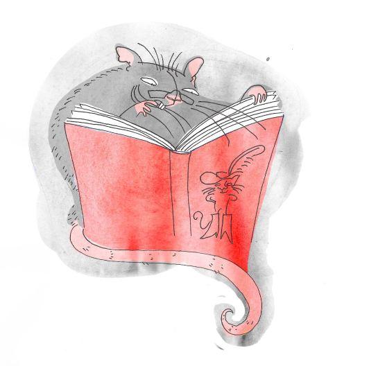 Leseratte (Illustration für die Kantonsbibliothek Schwyz)