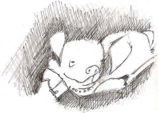 Schweine 1